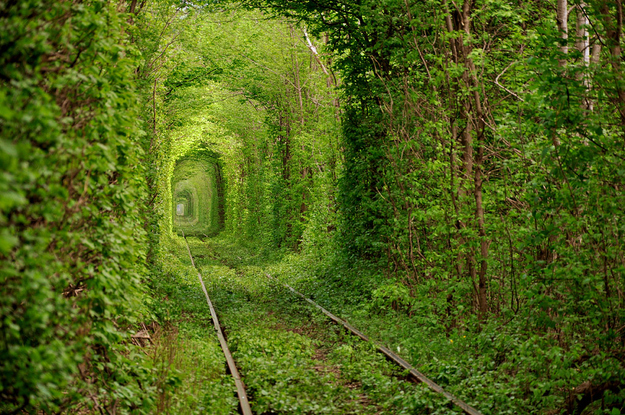 9. Tunnel of Love - Kleven, Ukraine