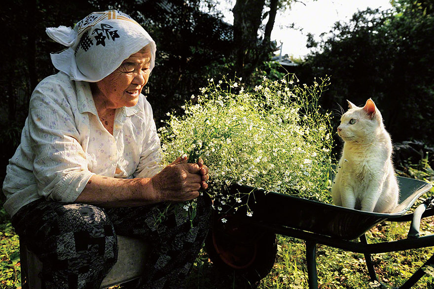 grandmother-and-cat-miyoko-ihara-fukumaru-11