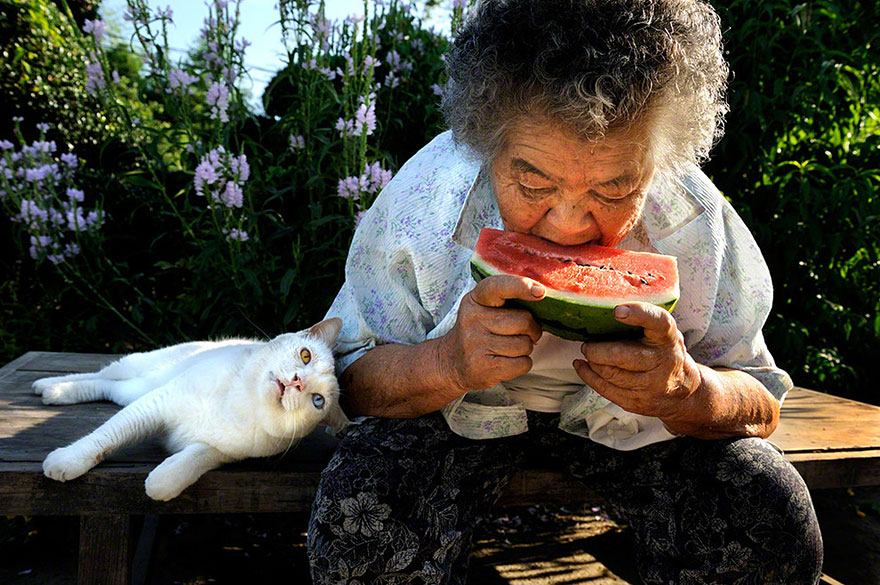 grandmother-and-cat-miyoko-ihara-fukumaru-3
