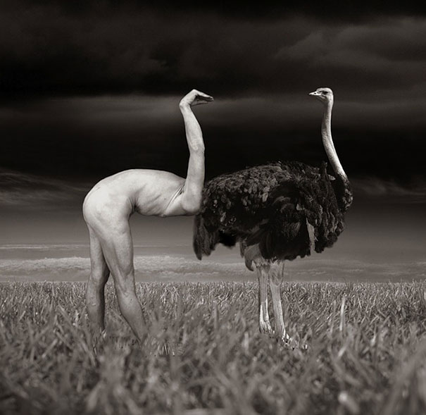 surreal-photo-manipulations-thomas-barbey-3