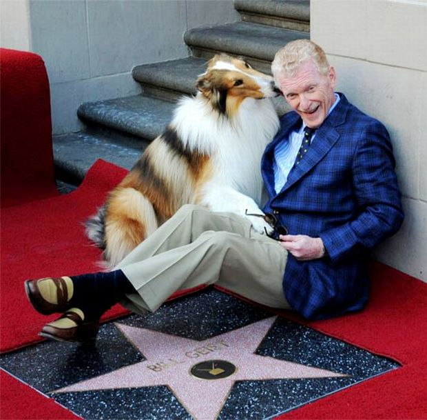 hollywood-walk-of-stars (13)